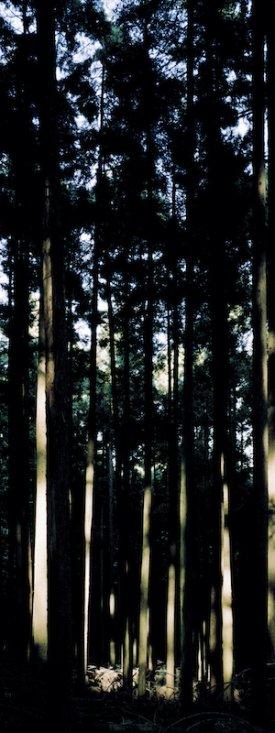 20130405showcase #2 tamotsu kido