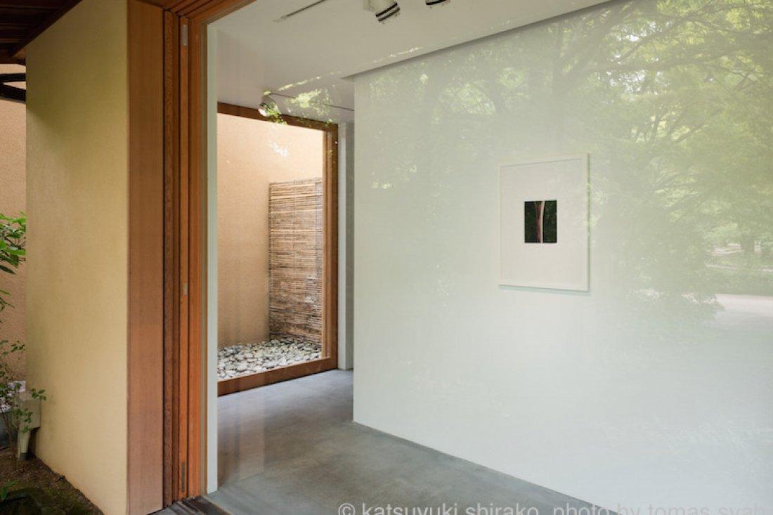 20130802白子勝之「exhibition4」