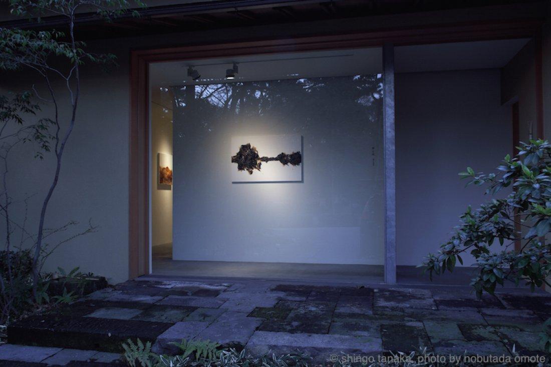 20090201 田中真吾「夢と現」 展示風景